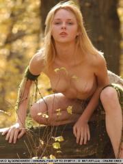 Blondes nues r dans les bois